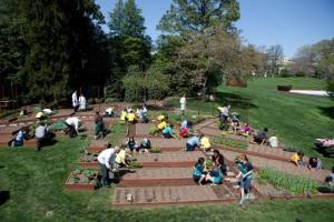 Práce na zahradě Bílého domu je součástí kampaně Michelle Obamové Let's Move, která propaguje zdravý pohyb.