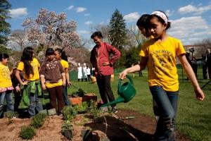 Michelle Obamová při výsadbě zeleniny v roce 2010 s žáky washingtonské základní školy Bancroft.